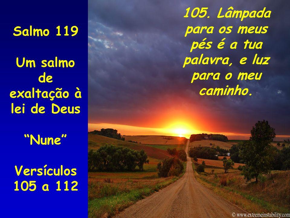 105. Lâmpada para os meus pés é a tua palavra, e luz para o meu caminho.