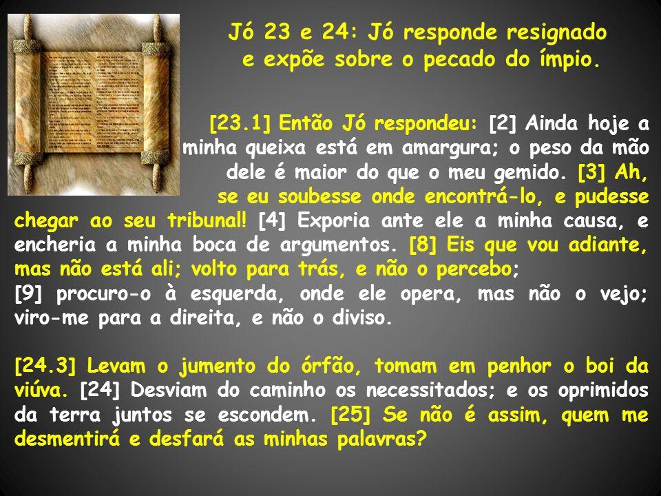 Jó 23 e 24: Jó responde resignado e expõe sobre o pecado do ímpio.