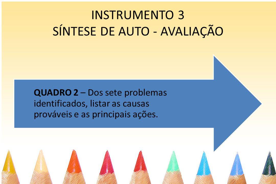 INSTRUMENTO 3 SÍNTESE DE AUTO - AVALIAÇÃO