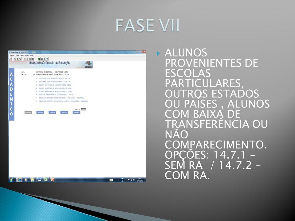 FASE VII