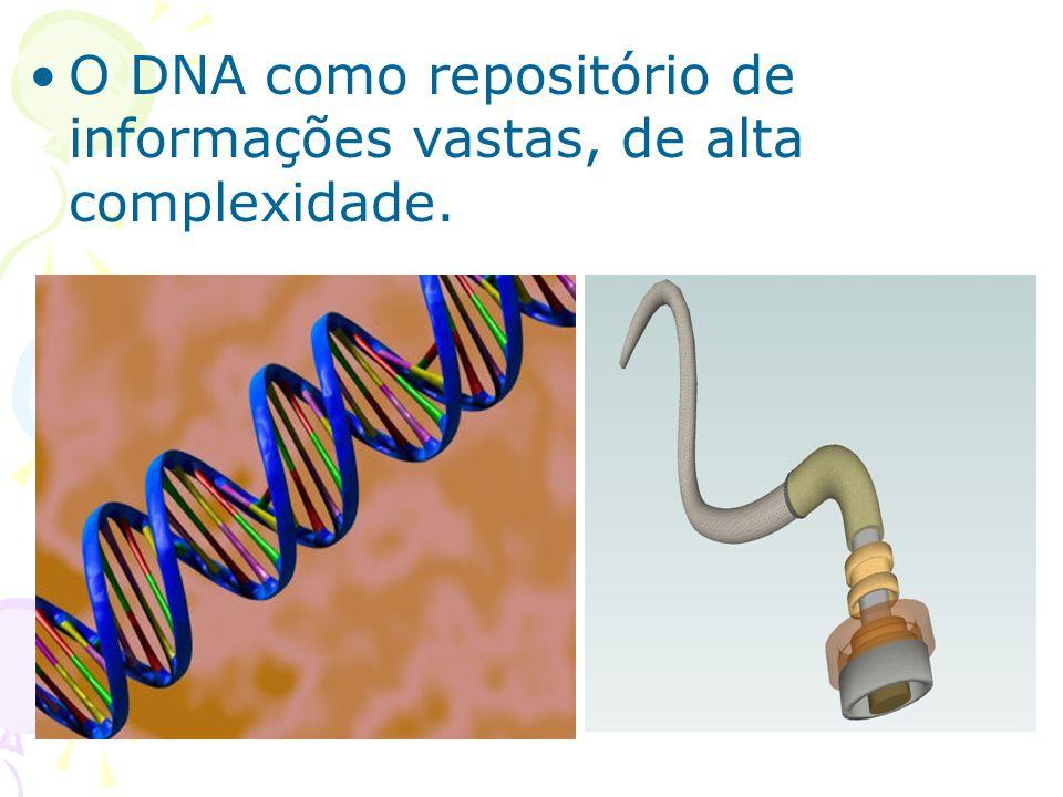 O DNA como repositório de informações vastas, de alta complexidade.