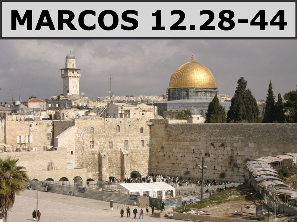 MARCOS 12.28-44