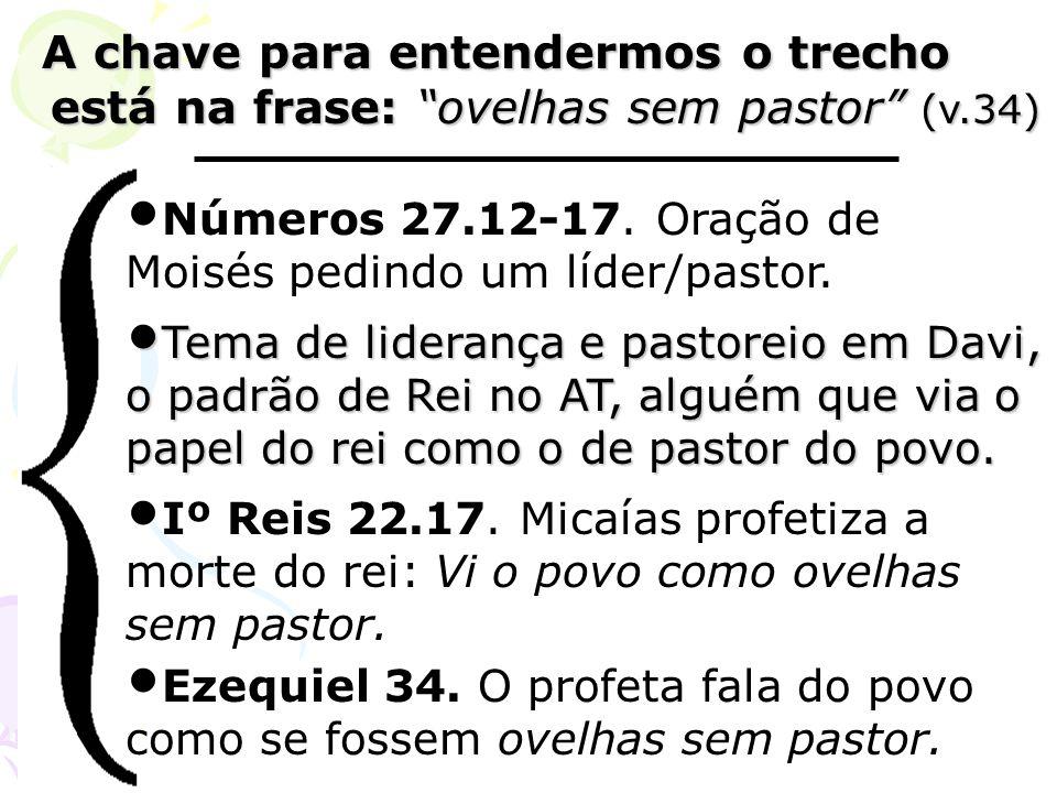 A chave para entendermos o trecho está na frase: ovelhas sem pastor (v.34)