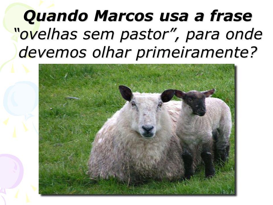 Quando Marcos usa a frase ovelhas sem pastor , para onde devemos olhar primeiramente