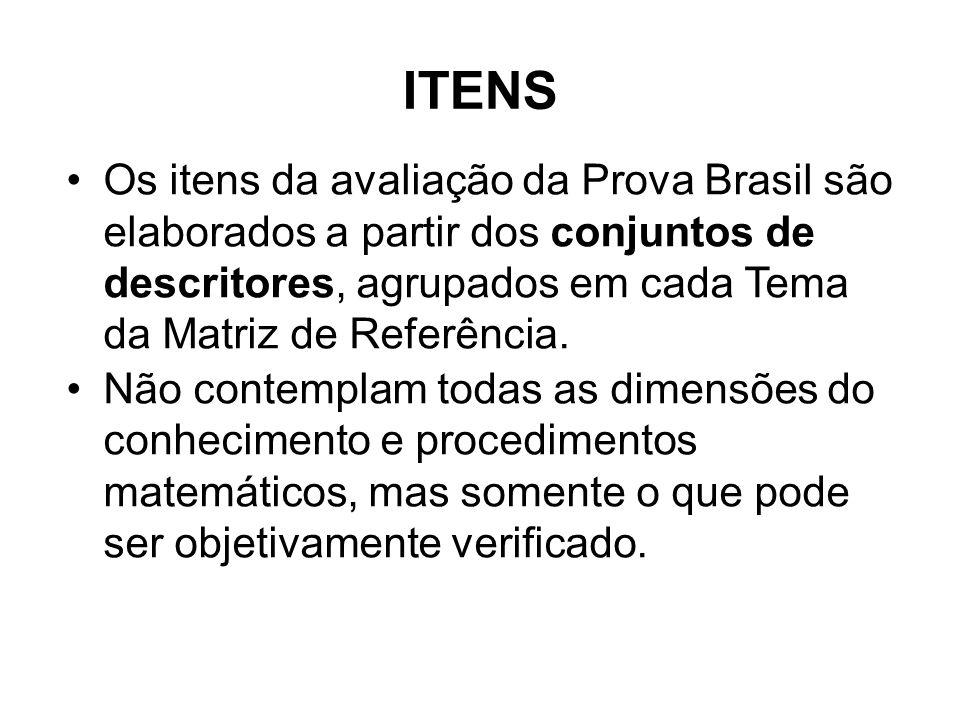 ITENS Os itens da avaliação da Prova Brasil são elaborados a partir dos conjuntos de descritores, agrupados em cada Tema da Matriz de Referência.