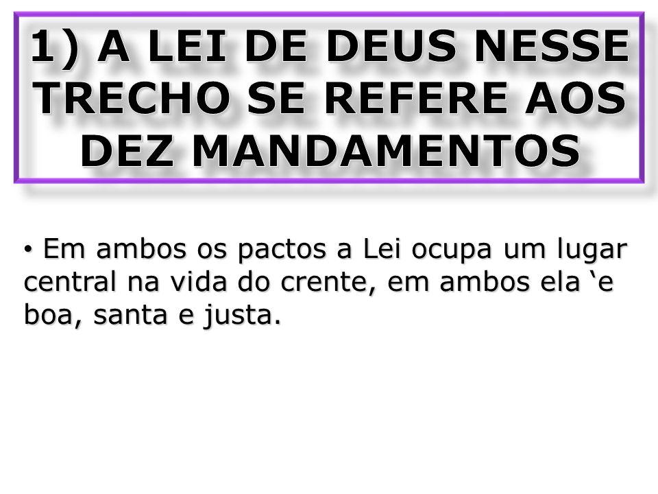 1) A LEI DE DEUS NESSE TRECHO SE REFERE AOS DEZ MANDAMENTOS