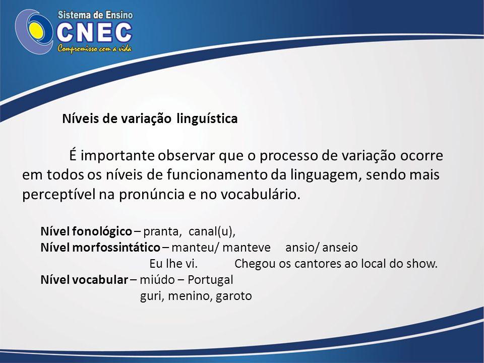Níveis de variação linguística