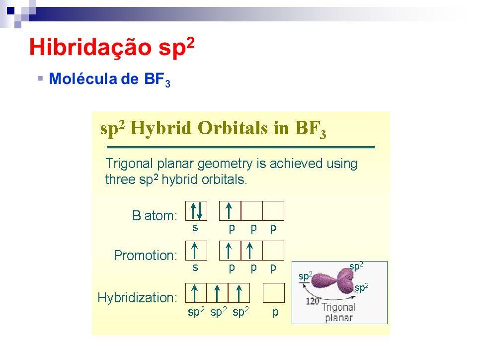 Hibridação sp2 Molécula de BF3