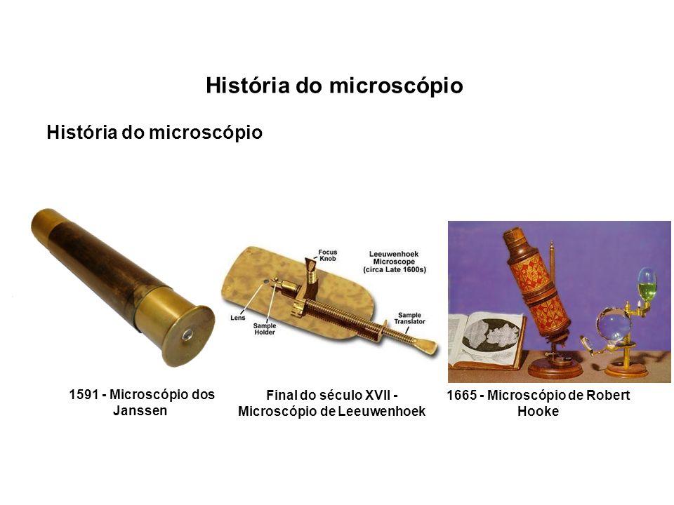 História do microscópio