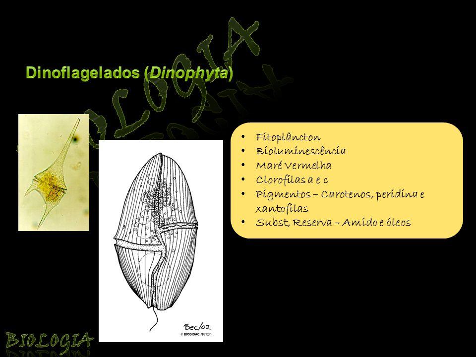 Biologia Biologia Dinoflagelados (Dinophyta) Fitoplâncton