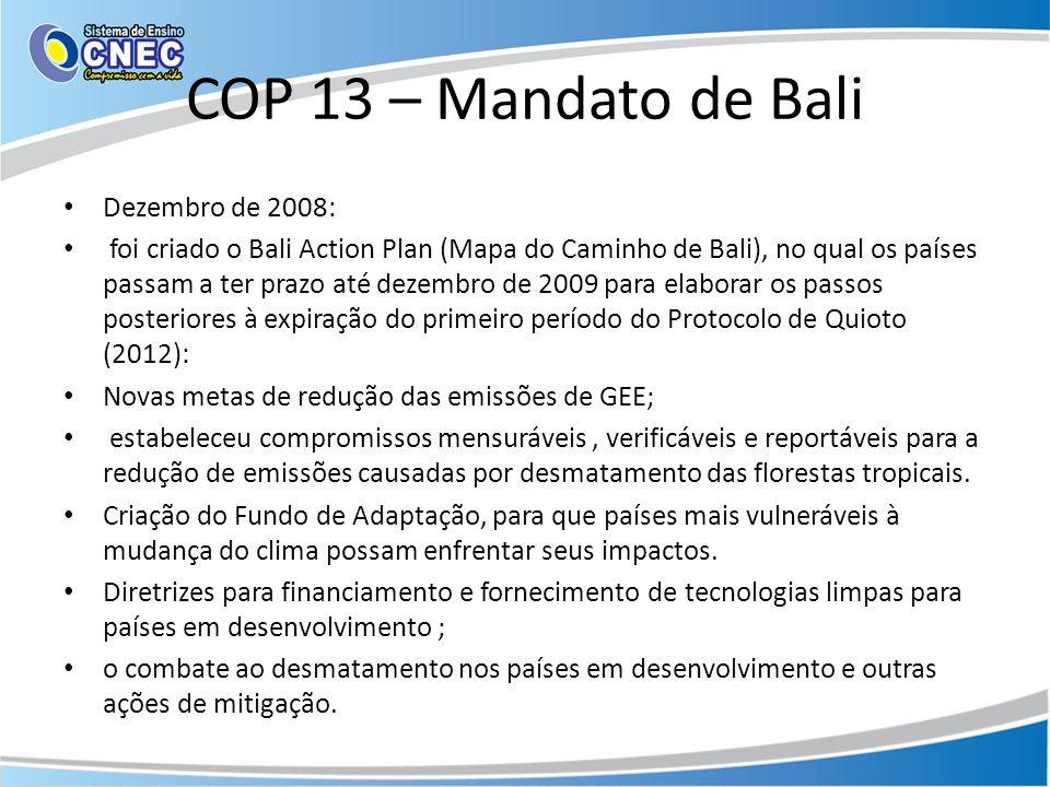 COP 13 – Mandato de Bali Dezembro de 2008: