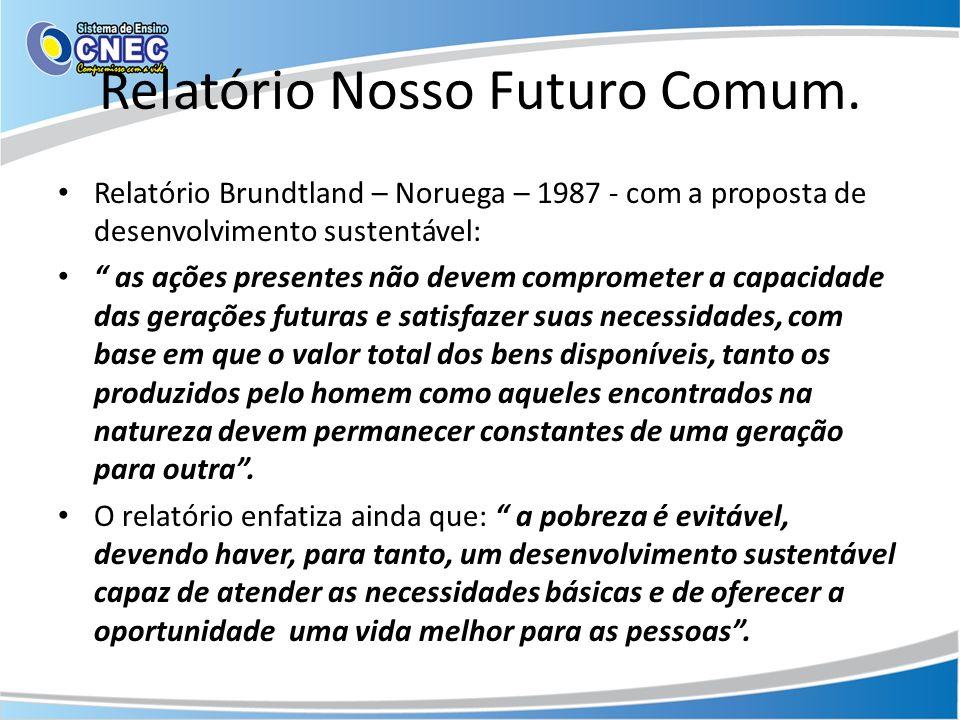 Relatório Nosso Futuro Comum.