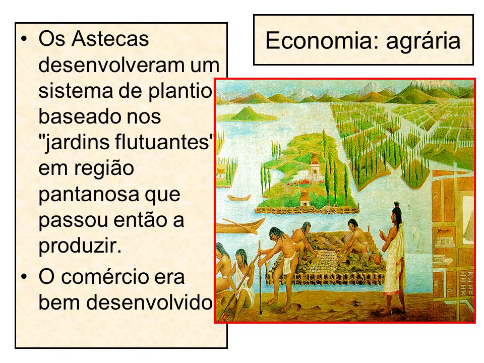 Economia: agrária Os Astecas desenvolveram um sistema de plantio baseado nos jardins flutuantes , em região pantanosa que passou então a produzir.