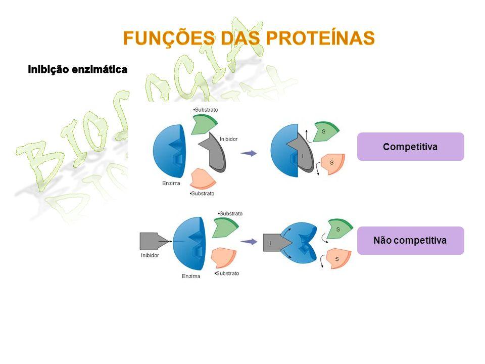 Biologia Funções das proteínas Inibição enzimática Competitiva