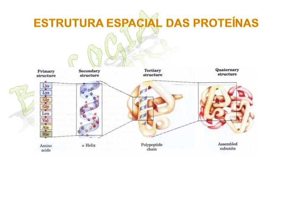 Estrutura espacial das proteínas