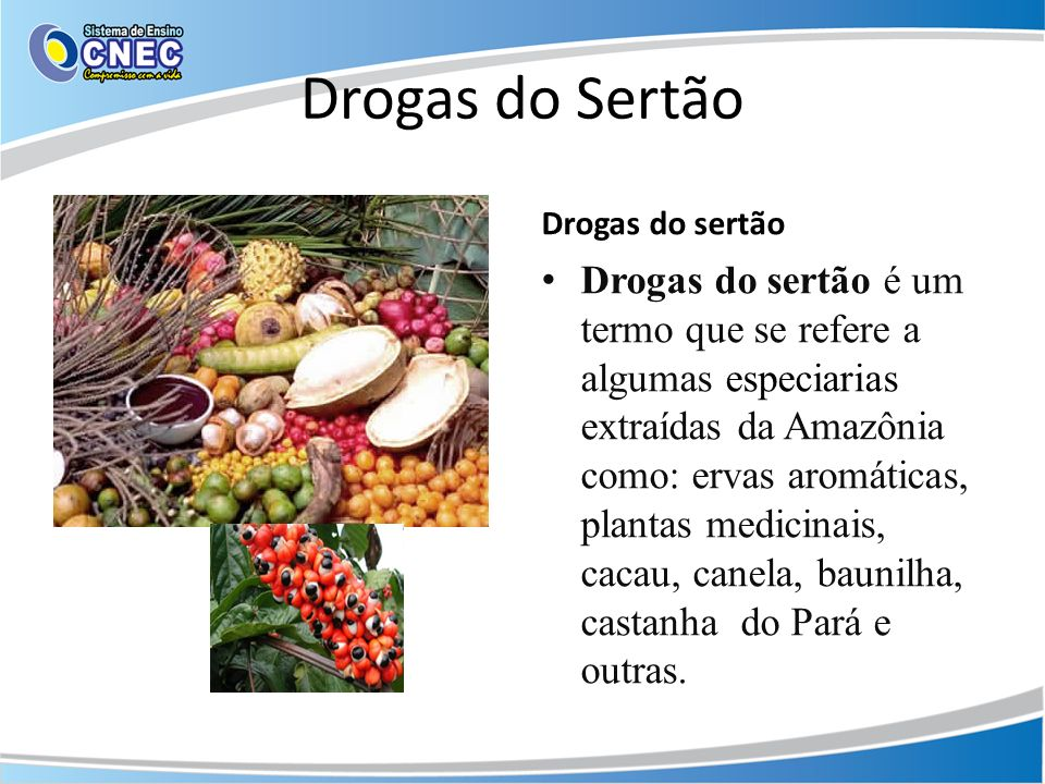 Drogas do Sertão Drogas do sertão.