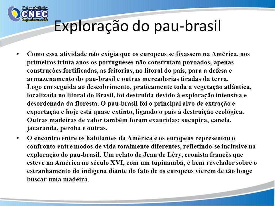 Exploração do pau-brasil