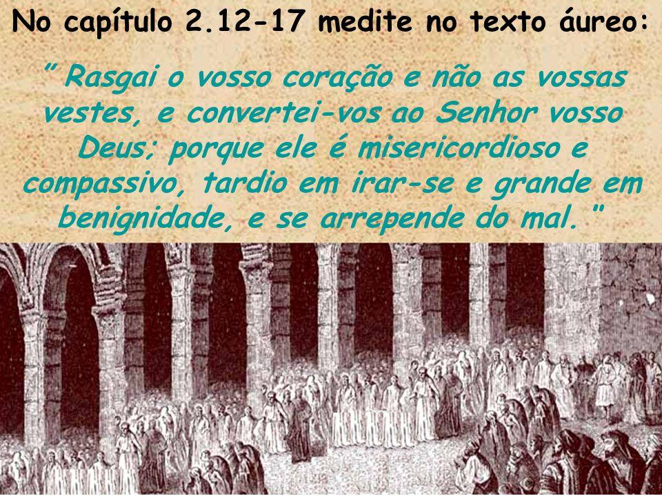 No capítulo 2.12-17 medite no texto áureo: