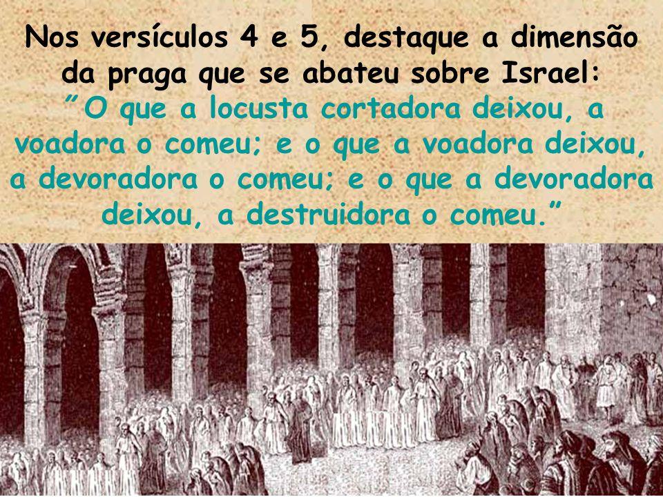 Nos versículos 4 e 5, destaque a dimensão da praga que se abateu sobre Israel: