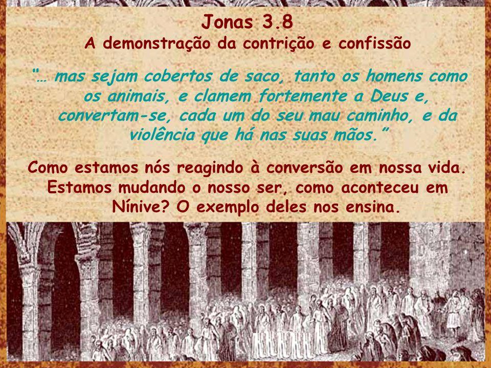 Jonas 3.8 A demonstração da contrição e confissão