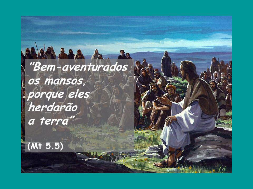 Bem-aventurados os mansos, porque eles herdarão a terra (Mt 5.5)