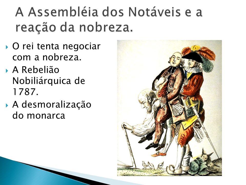 A Assembléia dos Notáveis e a reação da nobreza.