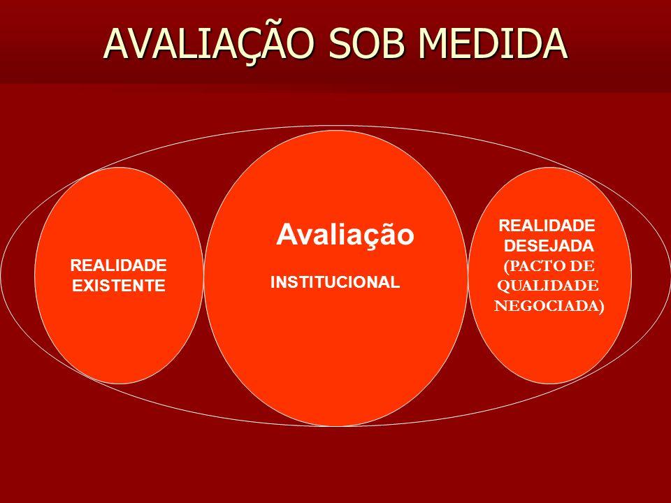AVALIAÇÃO SOB MEDIDA Avaliação INSTITUCIONAL REALIDADE EXISTENTE