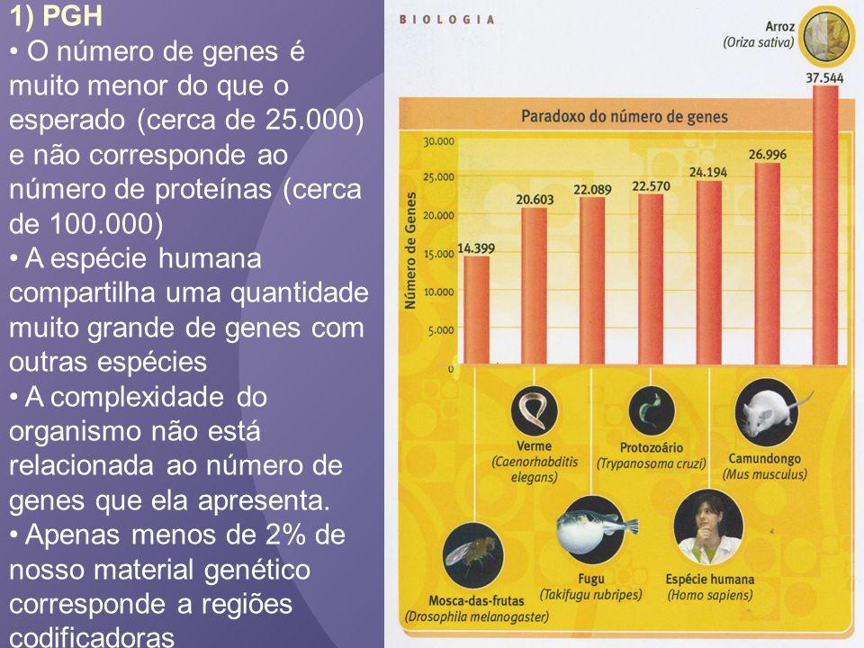 1) PGH O número de genes é muito menor do que o esperado (cerca de 25.000) e não corresponde ao número de proteínas (cerca de 100.000)
