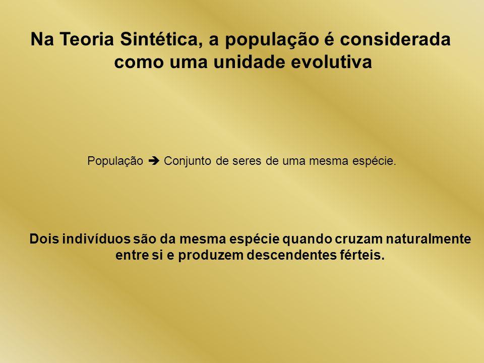 Na Teoria Sintética, a população é considerada