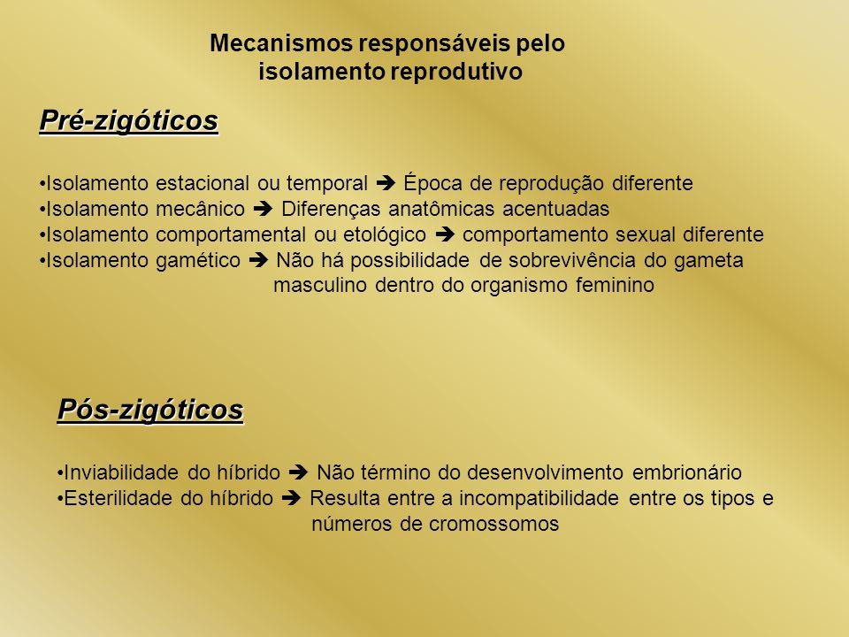 Mecanismos responsáveis pelo isolamento reprodutivo