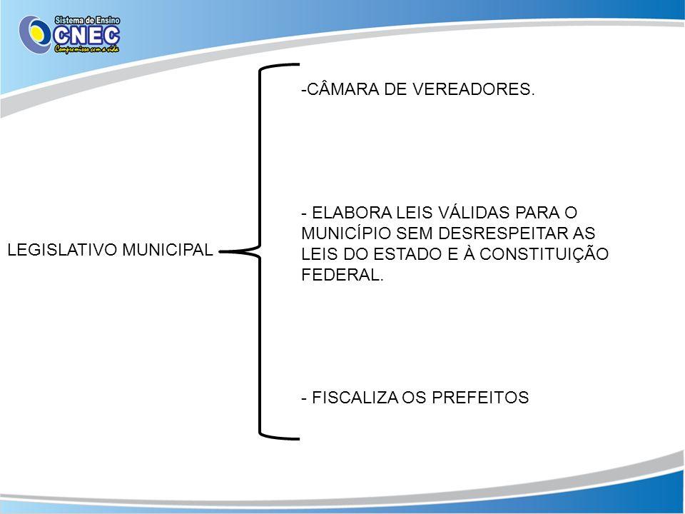 CÂMARA DE VEREADORES. ELABORA LEIS VÁLIDAS PARA O MUNICÍPIO SEM DESRESPEITAR AS LEIS DO ESTADO E À CONSTITUIÇÃO FEDERAL.