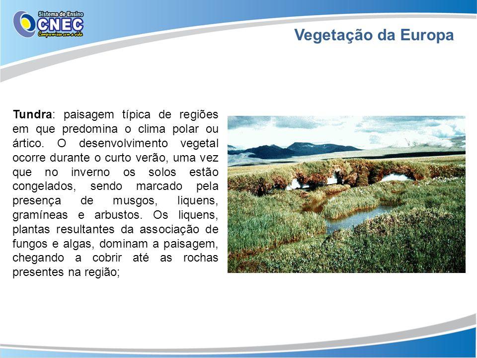 Vegetação da Europa