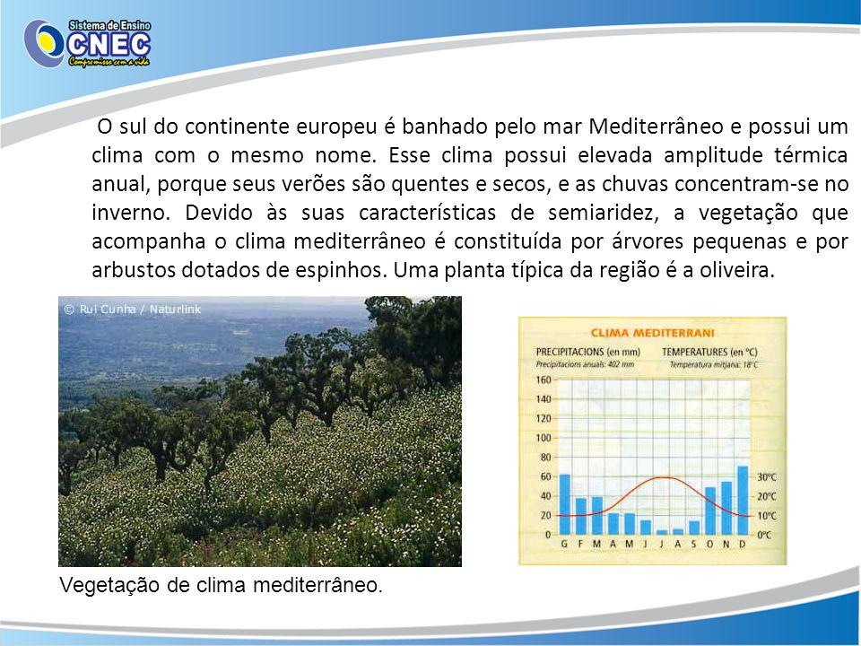 O sul do continente europeu é banhado pelo mar Mediterrâneo e possui um clima com o mesmo nome. Esse clima possui elevada amplitude térmica anual, porque seus verões são quentes e secos, e as chuvas concentram-se no inverno. Devido às suas características de semiaridez, a vegetação que acompanha o clima mediterrâneo é constituída por árvores pequenas e por arbustos dotados de espinhos. Uma planta típica da região é a oliveira.