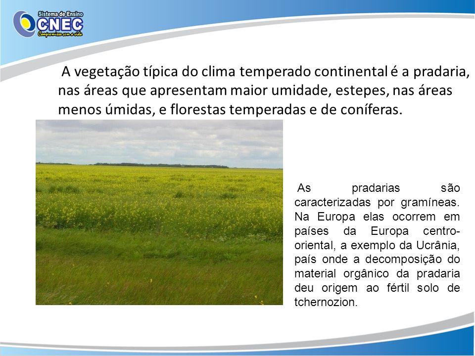 A vegetação típica do clima temperado continental é a pradaria, nas áreas que apresentam maior umidade, estepes, nas áreas menos úmidas, e florestas temperadas e de coníferas.