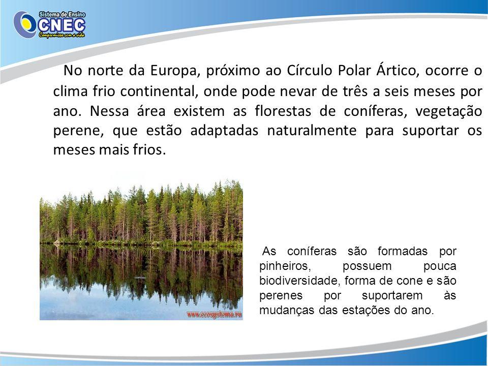 No norte da Europa, próximo ao Círculo Polar Ártico, ocorre o clima frio continental, onde pode nevar de três a seis meses por ano. Nessa área existem as florestas de coníferas, vegetação perene, que estão adaptadas naturalmente para suportar os meses mais frios.