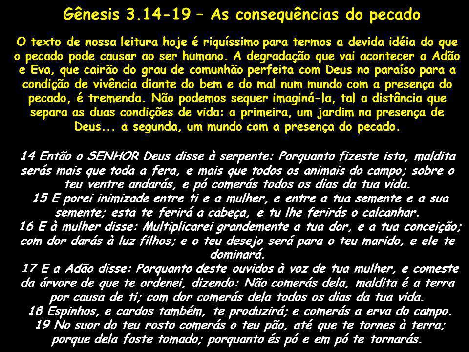 Gênesis 3.14-19 – As consequências do pecado