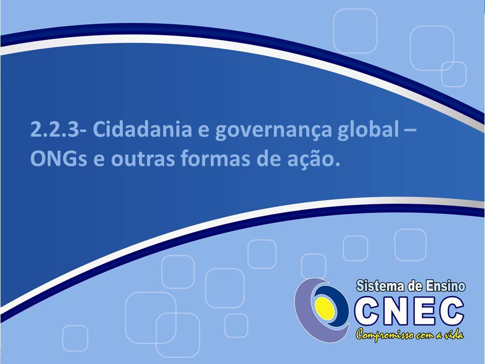 2.2.3- Cidadania e governança global – ONGs e outras formas de ação.