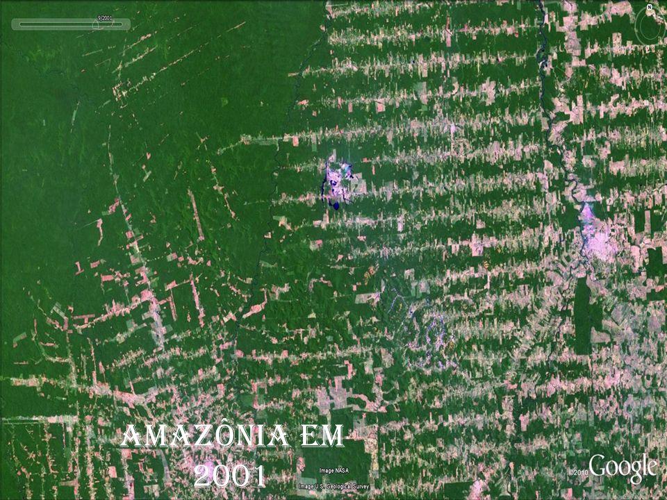 ESPAÇO GEOGRÁFICO AMAZÔNIA EM 1975 AMAZÔNIA EM 1989 AMAZÔNIA EM 2001