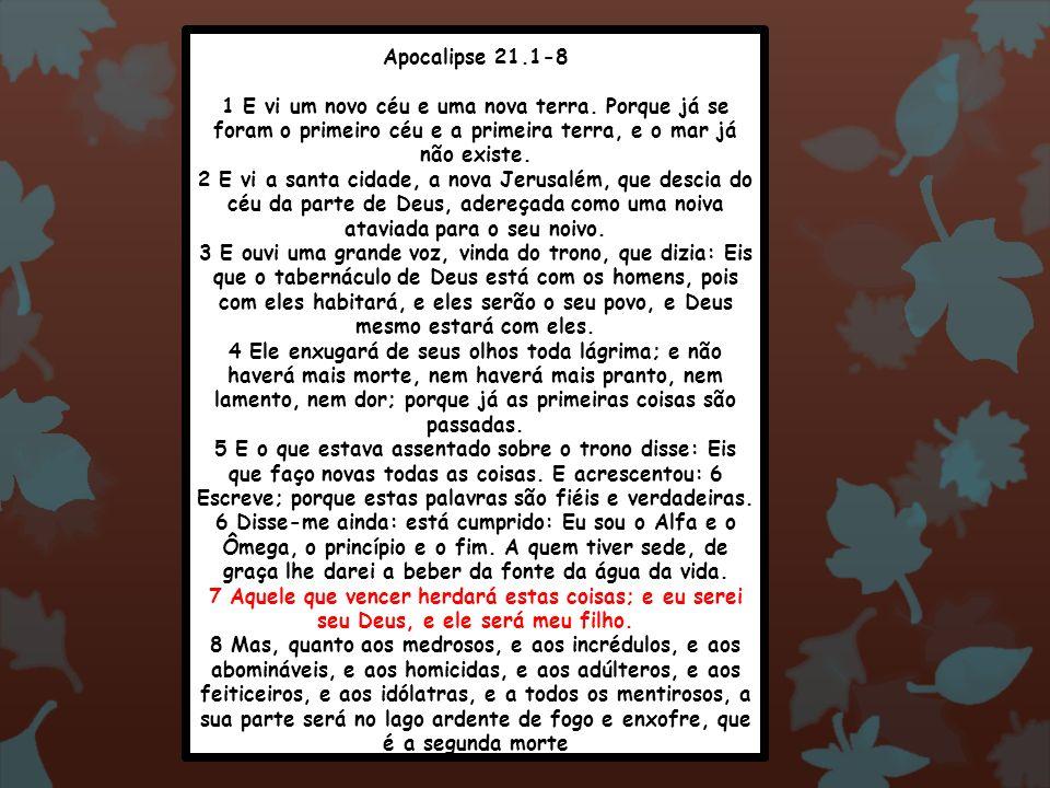 Apocalipse 21.1-8