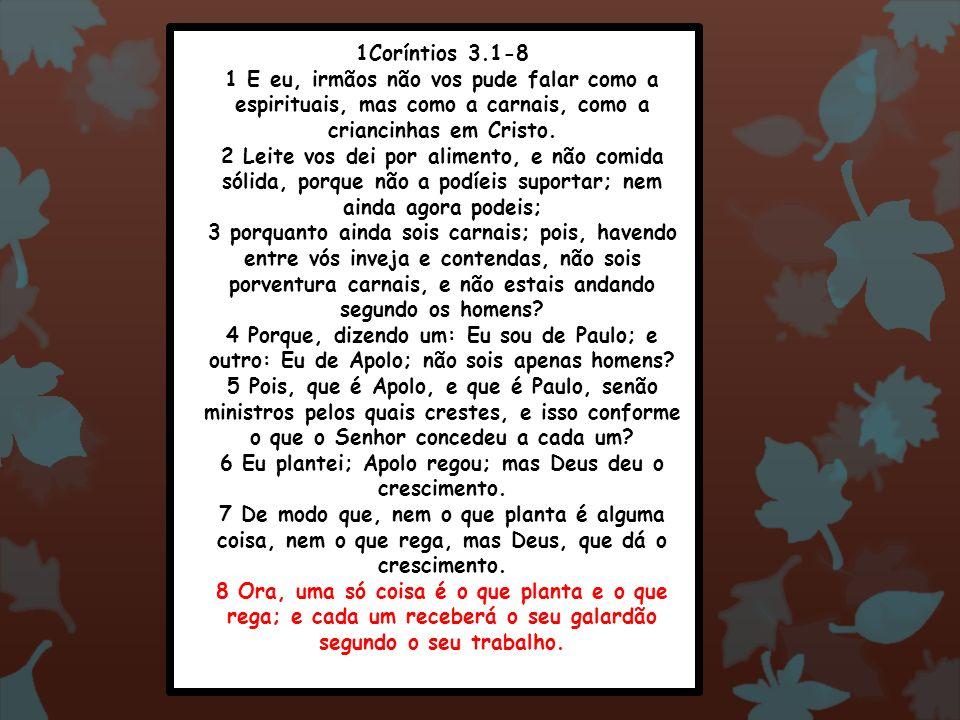 1Coríntios 3.1-8