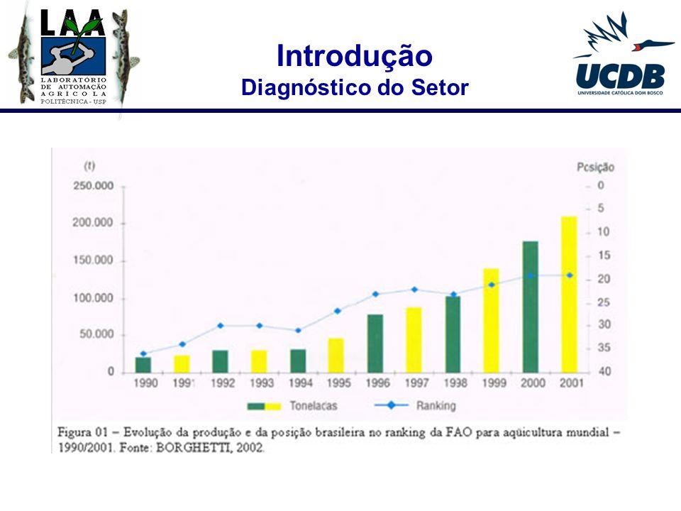 Introdução Diagnóstico do Setor