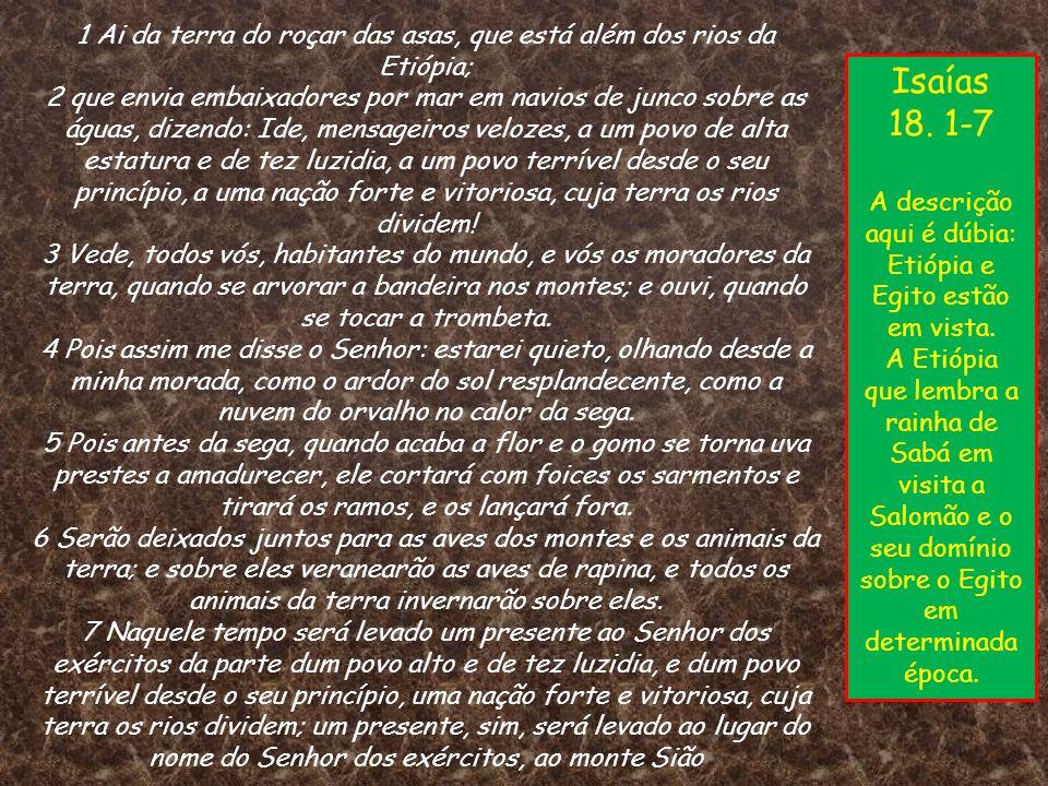 1 Ai da terra do roçar das asas, que está além dos rios da Etiópia; 2 que envia embaixadores por mar em navios de junco sobre as águas, dizendo: Ide, mensageiros velozes, a um povo de alta estatura e de tez luzidia, a um povo terrível desde o seu princípio, a uma nação forte e vitoriosa, cuja terra os rios dividem! 3 Vede, todos vós, habitantes do mundo, e vós os moradores da terra, quando se arvorar a bandeira nos montes; e ouvi, quando se tocar a trombeta. 4 Pois assim me disse o Senhor: estarei quieto, olhando desde a minha morada, como o ardor do sol resplandecente, como a nuvem do orvalho no calor da sega. 5 Pois antes da sega, quando acaba a flor e o gomo se torna uva prestes a amadurecer, ele cortará com foices os sarmentos e tirará os ramos, e os lançará fora. 6 Serão deixados juntos para as aves dos montes e os animais da terra; e sobre eles veranearão as aves de rapina, e todos os animais da terra invernarão sobre eles. 7 Naquele tempo será levado um presente ao Senhor dos exércitos da parte dum povo alto e de tez luzidia, e dum povo terrível desde o seu princípio, uma nação forte e vitoriosa, cuja terra os rios dividem; um presente, sim, será levado ao lugar do nome do Senhor dos exércitos, ao monte Sião