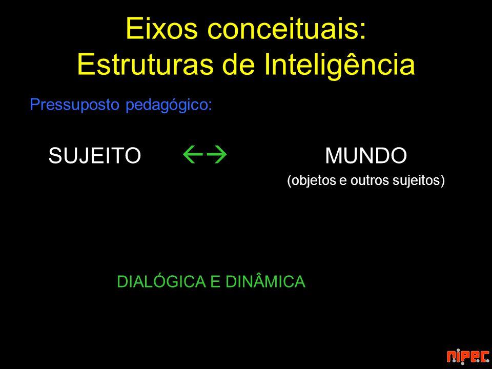 Eixos conceituais: Estruturas de Inteligência