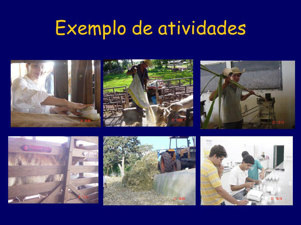 Exemplo de atividades