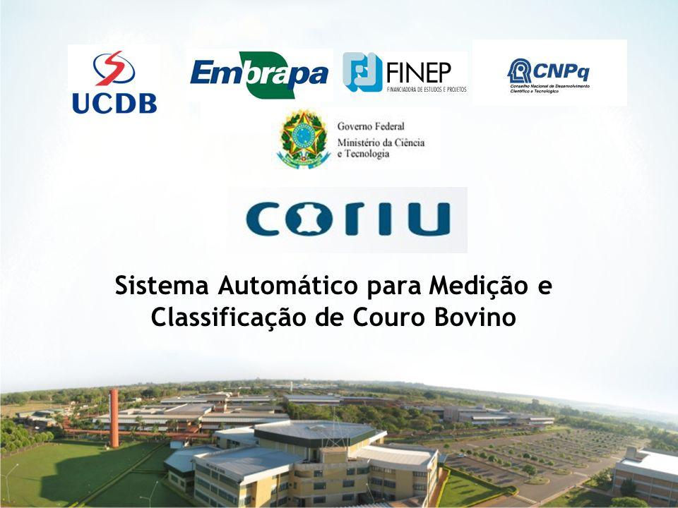 Sistema Automático para Medição e Classificação de Couro Bovino