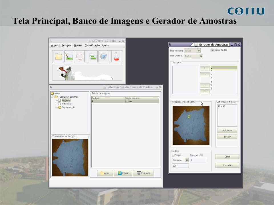 Tela Principal, Banco de Imagens e Gerador de Amostras