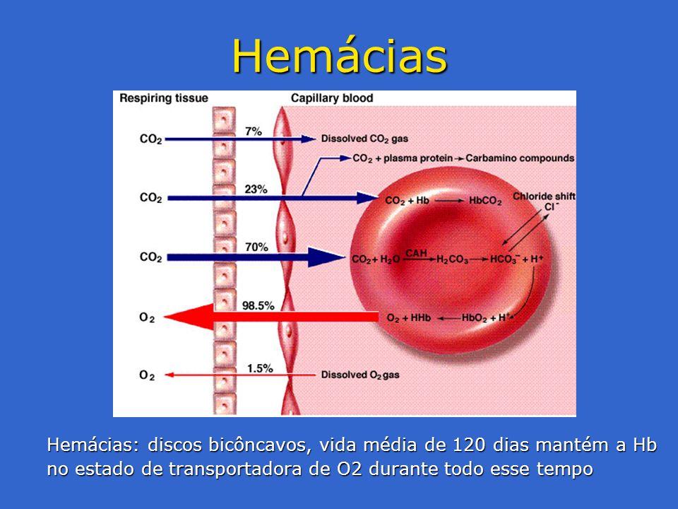 Hemácias Hemácias: discos bicôncavos, vida média de 120 dias mantém a Hb no estado de transportadora de O2 durante todo esse tempo.
