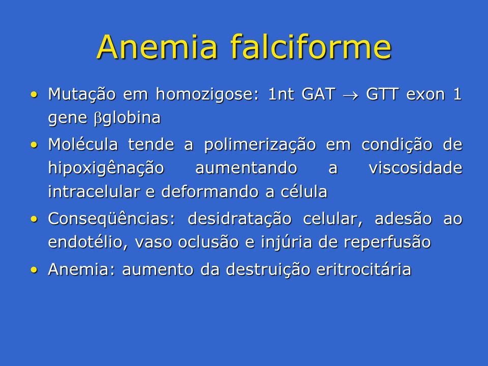 Anemia falciforme Mutação em homozigose: 1nt GAT  GTT exon 1 gene globina.