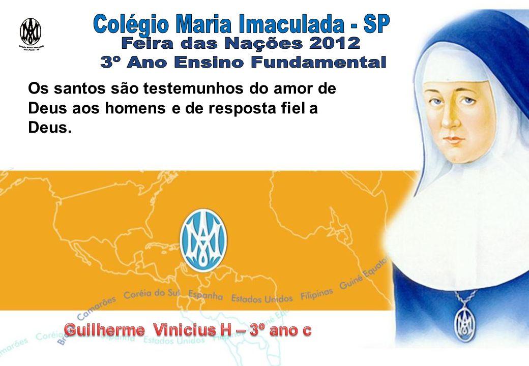 Guilherme Vinicius H – 3º ano c
