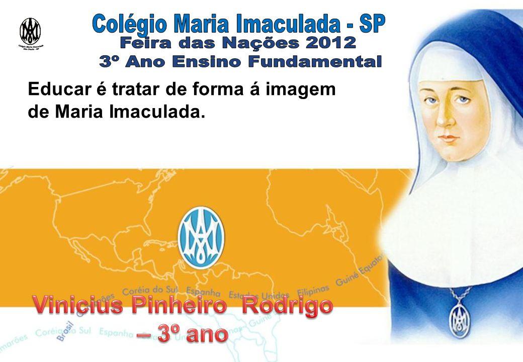 Vinicius Pinheiro Rodrigo – 3º ano